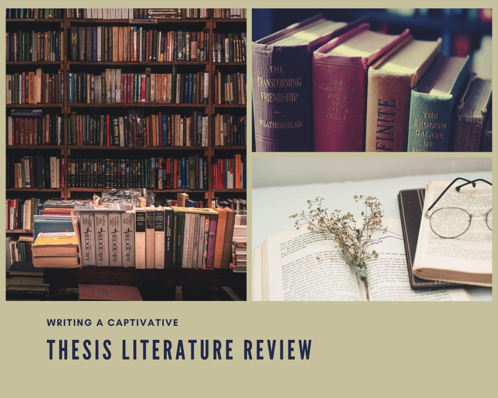 Thesis Literature Review